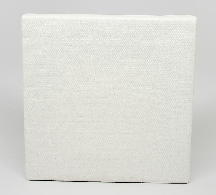 a plain blank white canvas